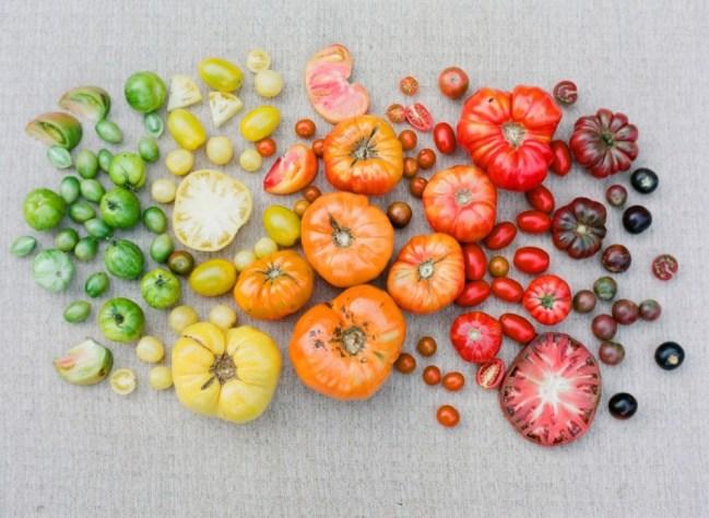 um-doce-dia-tomates-frescos-05