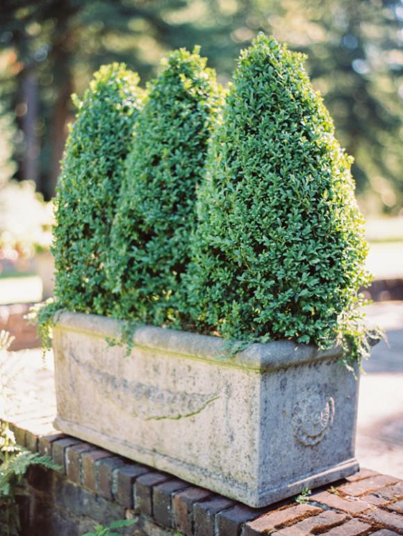 um-doce-dia-a-elegancia-do-jardim-e-suas-escadas-de-pedra-27