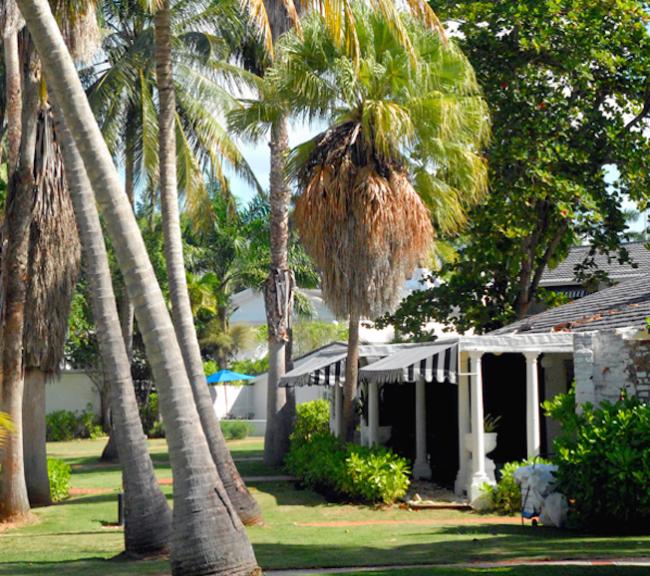 um-doce-dia-um-destino-dos-sonhos-na-jamaica-09
